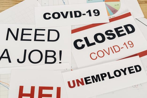 học ngành nào không thất nghiệp mùa covid 19